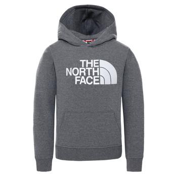 Textiel Kinderen Sweaters / Sweatshirts The North Face DREW PEAK HOODIE Grijs