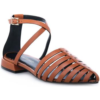 Schoenen Dames Sandalen / Open schoenen Elvio Zanon PARMA CUOIO Marrone