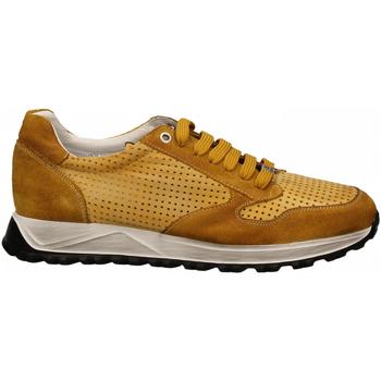 Schoenen Heren Lage sneakers Exton ANT ocra