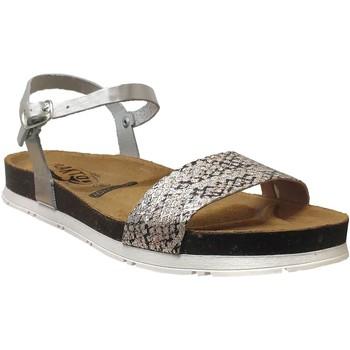 Schoenen Dames Sandalen / Open schoenen Plakton Garden Grijs metaal leer