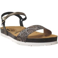 Schoenen Dames Sandalen / Open schoenen Plakton Garden Metallic brons