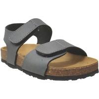 Schoenen Jongens Sandalen / Open schoenen Plakton Partner Grijs