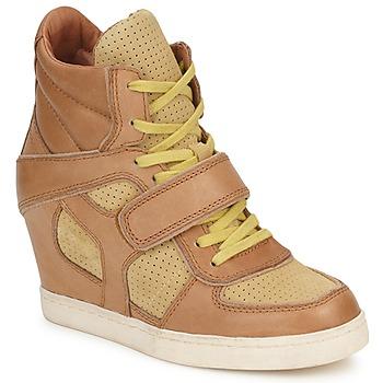 Schoenen Dames Hoge sneakers Ash COCA Bruin / Geel
