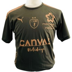 Textiel Jongens T-shirts & Polo's Puma Maillot enfant Third MHB 2018/2019 vert kaki/marron clair/vert kaki