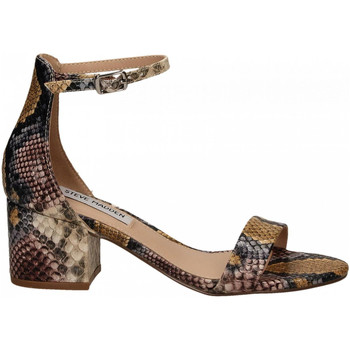 Schoenen Dames Sandalen / Open schoenen Steve Madden IRENEE snake