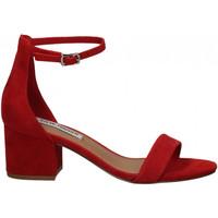Schoenen Dames Sandalen / Open schoenen Steve Madden IRENEE SUEDE red