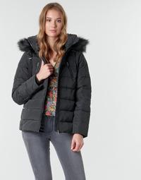 Textiel Dames Parka jassen Naf Naf BU-CHOUPINOU COURT Zwart