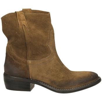 Schoenen Dames Laarzen Ton Gout VELOUR bosco-bosco