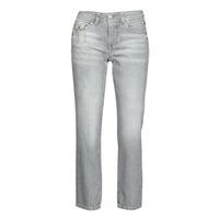 Textiel Dames Straight jeans Freeman T.Porter LOREEN DENIM Grijs