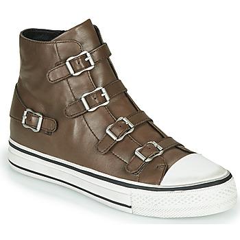 Schoenen Dames Hoge sneakers Ash VIRGIN FANGO Grijs