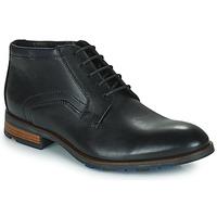Schoenen Heren Laarzen Lloyd  Zwart