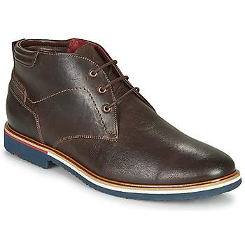 Schoenen Heren Laarzen Lloyd  Bruin