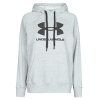 Textiel Dames Sweaters / Sweatshirts Under Armour RIVAL FLEECE LOGO Grijs