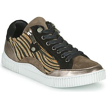 Schoenen Dames Lage sneakers Regard IDEM V6 CRIS TAUPE Bruin