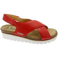 Schoenen Dames Sandalen / Open schoenen Mephisto MEPHTALLYro rosso