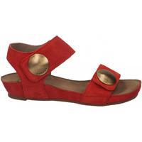 Schoenen Dames Sandalen / Open schoenen Ca Shott SUEDE rosso