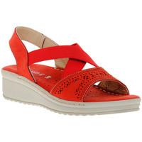 Schoenen Dames Sandalen / Open schoenen Grunland ROSSO 10LALL Rosso