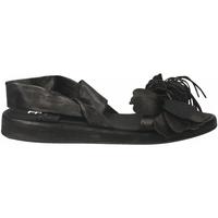 Schoenen Dames Sandalen / Open schoenen Now CLOE' nero-acciaio