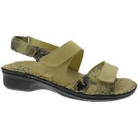 Schoenen Dames Sandalen / Open schoenen Calzaturificio Loren LOM2833ta tortora