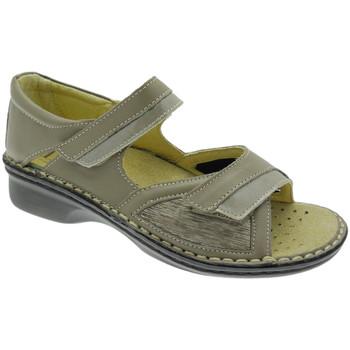 Schoenen Dames Sandalen / Open schoenen Calzaturificio Loren LOM2834to tortora