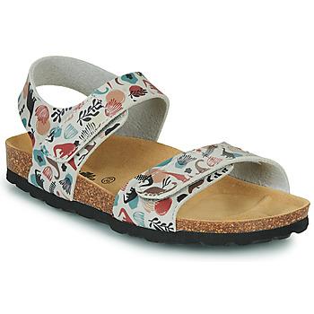 Schoenen Kinderen Sandalen / Open schoenen Citrouille et Compagnie BELLI JOE Beige