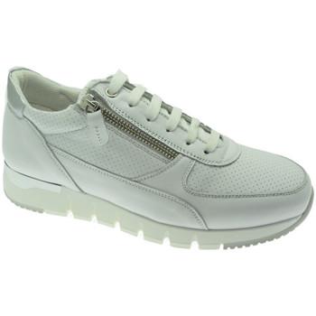 Schoenen Dames Lage sneakers Melluso MW09730GDbia bianco