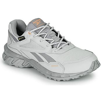 Schoenen Lage sneakers Reebok Classic RIDGERIDER 5 GTX Grijs