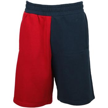 Textiel Jongens Korte broeken / Bermuda's Fila Tave Shorts Kids Blauw