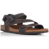 Schoenen Heren Sandalen / Open schoenen Interbios 9557 Bruin