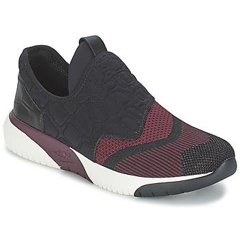 Schoenen Dames Lage sneakers Ash SODA Bordeau