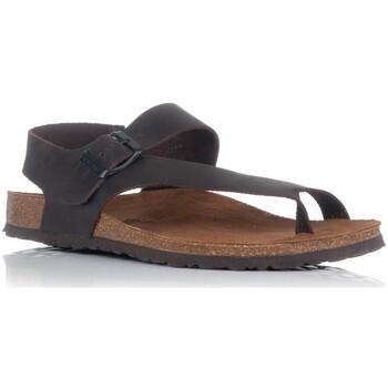 Schoenen Heren Sandalen / Open schoenen Interbios 9512 Bruin