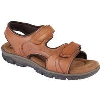 Schoenen Heren Sandalen / Open schoenen Roamers  Tan