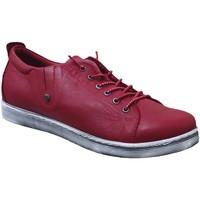 Schoenen Dames Derby Andrea Conti 0348736 sneaker Rood leer