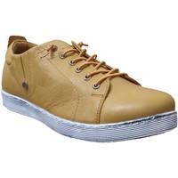 Schoenen Dames Derby Andrea Conti 0348736 sneaker Geel leer