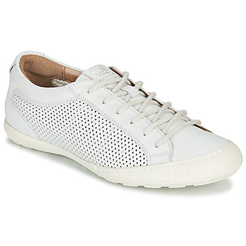 Schoenen Dames Lage sneakers PLDM by Palladium GRACIEUSE LEA Wit
