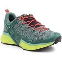 Schoenen Dames Wandelschoenen Salewa Trekking shoes  Ws Dropline 61369-5585 green
