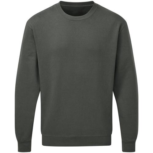 Textiel Heren Sweaters / Sweatshirts Sg SG20 Houtskool