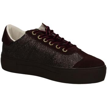 Schoenen Dames Lage sneakers Roberta Di Camerino  wine-vinaccio