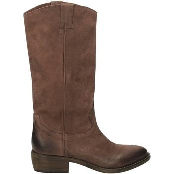 Schoenen Dames Hoge laarzen Ton Gout WASH terra-terra