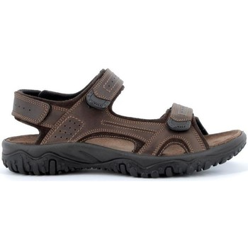 Schoenen Heren Outdoorsandalen Robert IMAC503750ma marrone