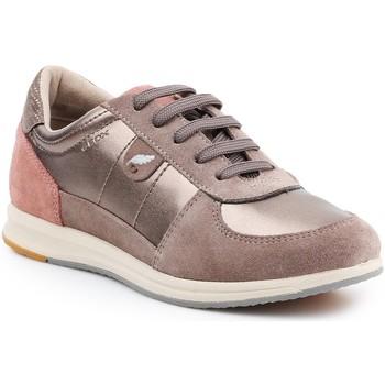 Schoenen Dames Lage sneakers Geox Goex D avery B - Pearl  D52H5B-0AJ22-C9HQ6 gold, beige