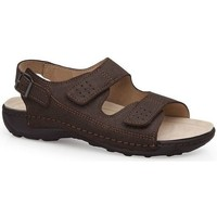 Schoenen Heren Sandalen / Open schoenen Calzamedi BECHAMP SANDALEN BRUIN