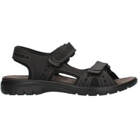 Schoenen Heren Outdoorsandalen Imac 503370 Black