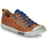 Schoenen Jongens Lage sneakers GBB STELLIO Bruin