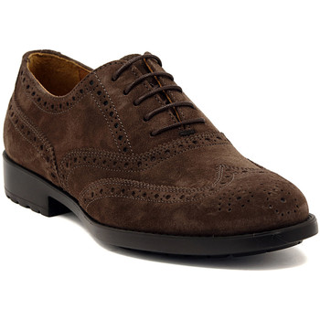Schoenen Heren Klassiek Marco Ferretti NEWPORT BROWN Multicolore