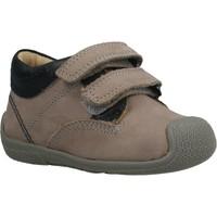 Schoenen Jongens Lage sneakers Chicco GREGORINO Bruin