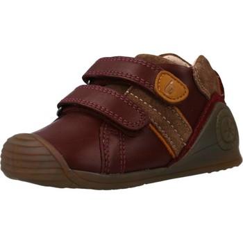 Schoenen Meisjes Lage sneakers Biomecanics 191153 Rood