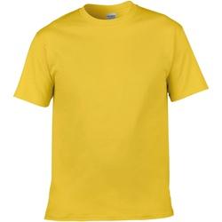 Textiel Heren T-shirts korte mouwen Gildan Soft-Style Daisy