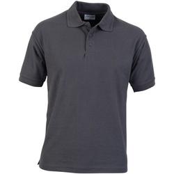 Textiel Heren Polo's korte mouwen Absolute Apparel  Konvooi Grijs