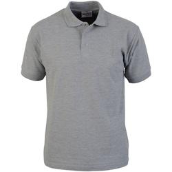 Textiel Heren Polo's korte mouwen Absolute Apparel  Sportgrijs